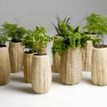group of planters