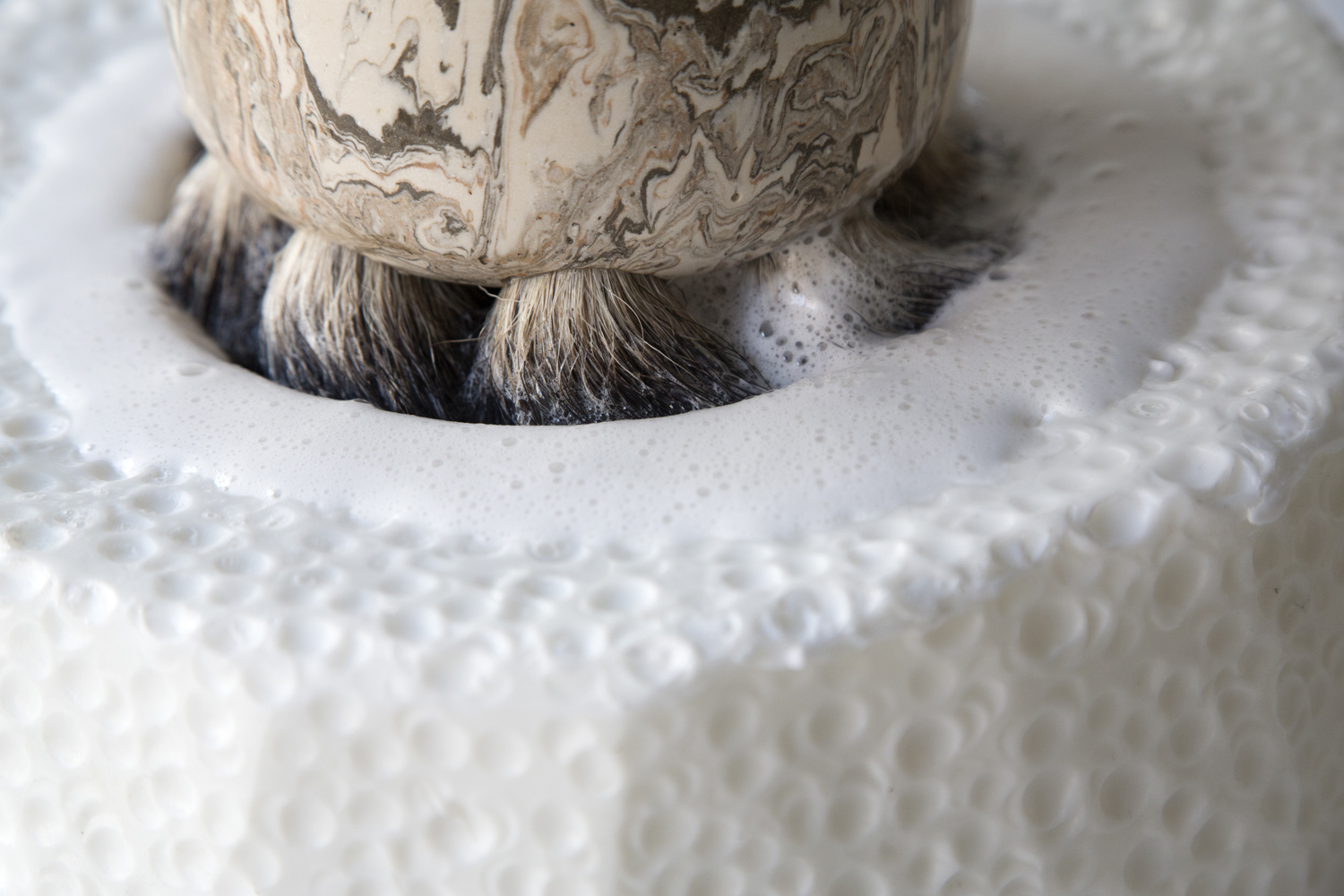 Frothing Soap Foaming